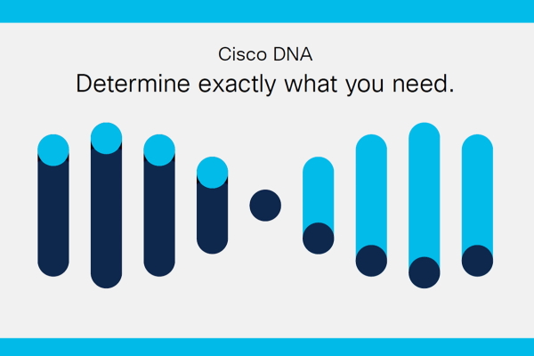 Cisco DNA Checklist